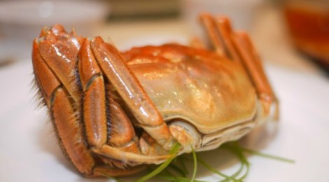Hairy Crabs indulgence at Elegant Inn