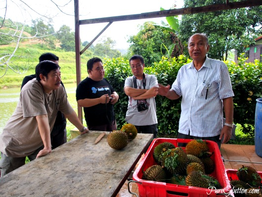 durian briefing