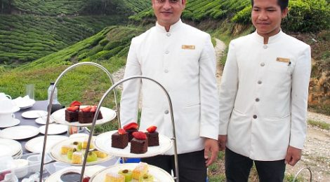CAMERON HIGHLANDS RESORT: PICNIC IN THE HILLS