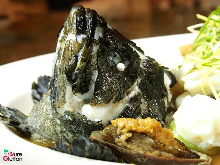 steamed fish3